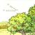 秋天的图画-第01课